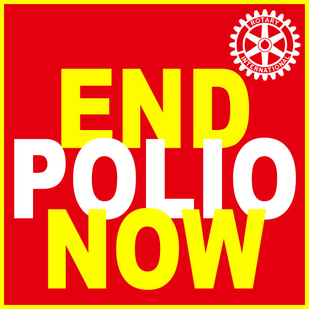 Donation-End-Polio-Now